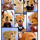 Bad Teddy's by Amy-lee Foley