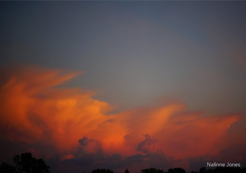 Orange Puffy Cloud  by Nalinne Jones