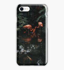 Botanical III iPhone Case/Skin