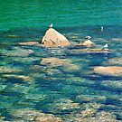 Tahoe Impressionism by Barbara  Brown
