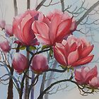 Magnificent Magnolia by Vickyh