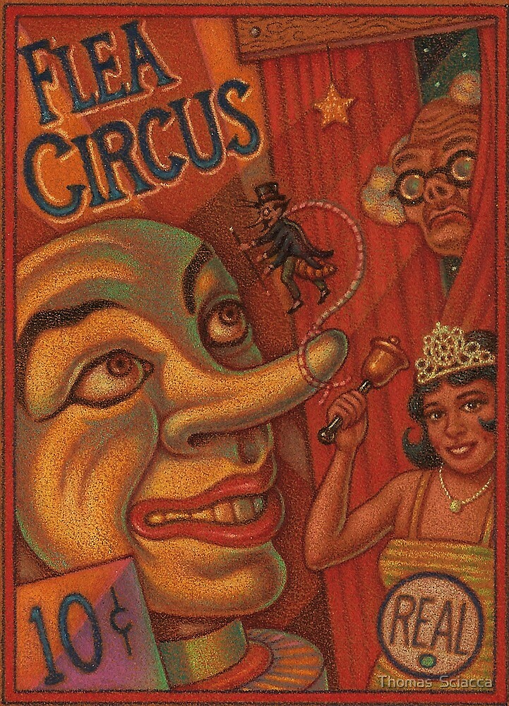 Flea Circus by Thomas  Sciacca