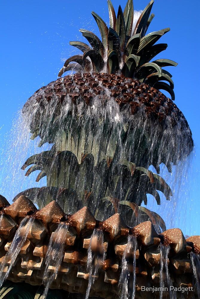 Pineapple Fountain #2, Charleston, SC by Benjamin Padgett