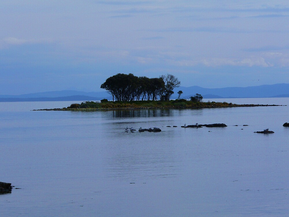 Island in blue by Jacko