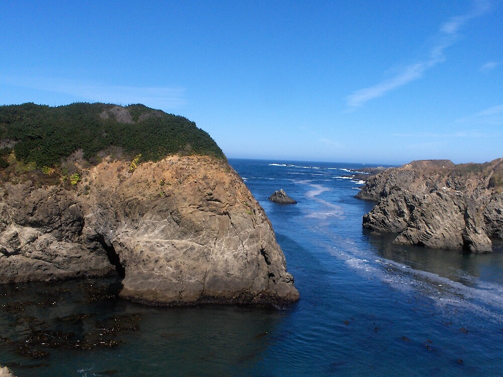 """""""The California Coast, The Surf"""" by lharker"""