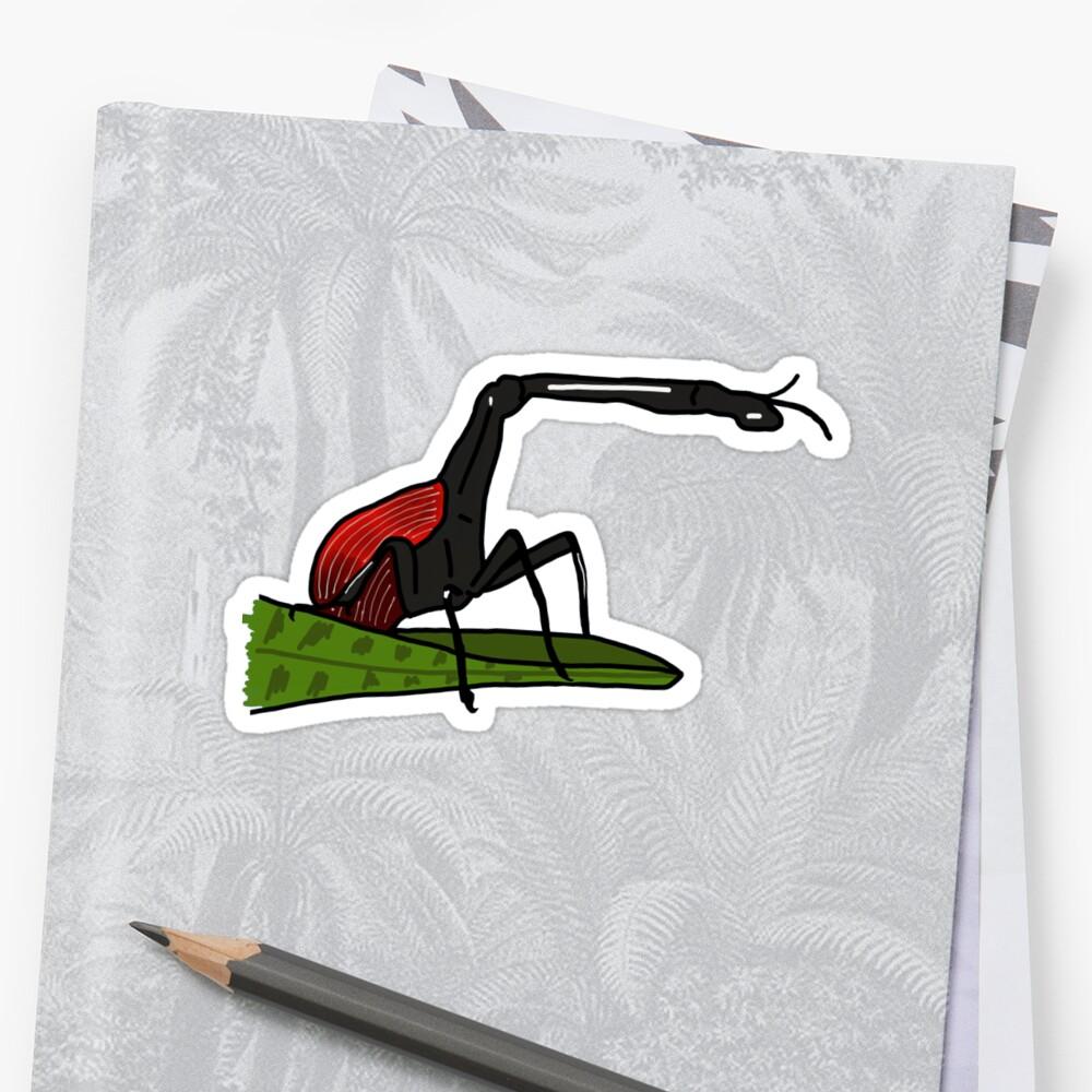 Giraffe-Necked Weevil by wildlifeandlove
