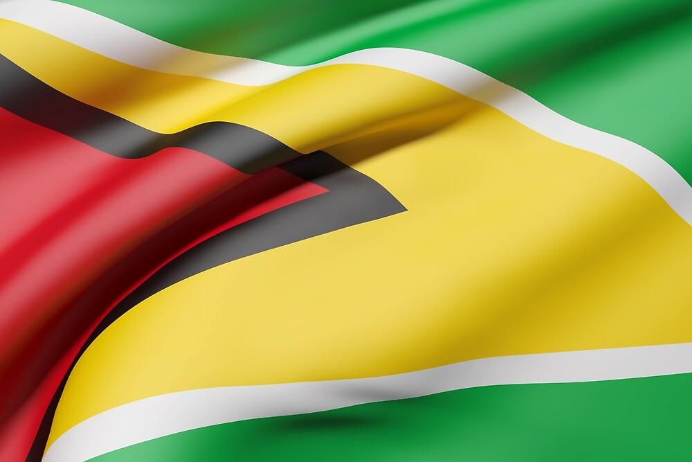 Republic of Guyana flag by erllre74