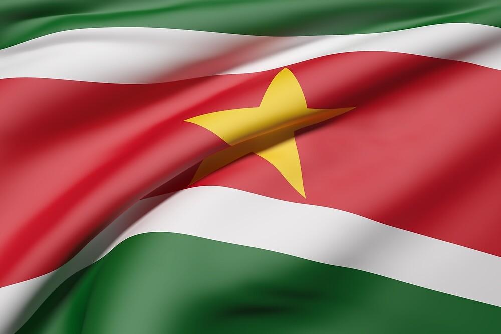 Suriname flag by erllre74