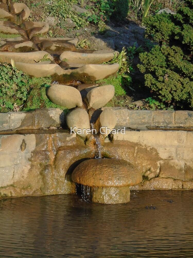 Pool of Vesicas, Chalice Well Gardens, Glastonbury by Karen Chard