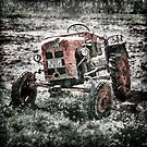Tractor in field  by Manfred Belau
