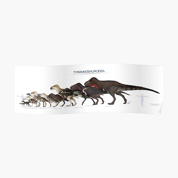 Tyrannosauroid Dinosaurs Size Poster