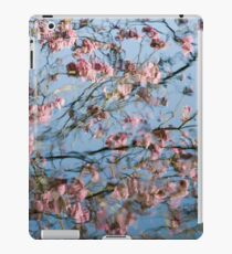 Water... Color (variation - abstract nature photography series) iPad Case/Skin