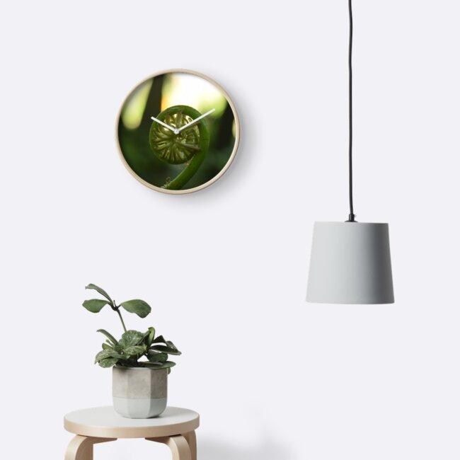 new fern shoot by nellymirikitani