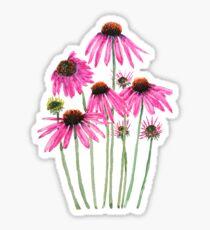pink purple coneflower watercolor  Sticker