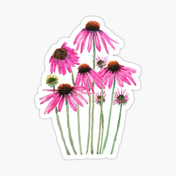 rosa lila Sonnenhut Aquarell Sticker