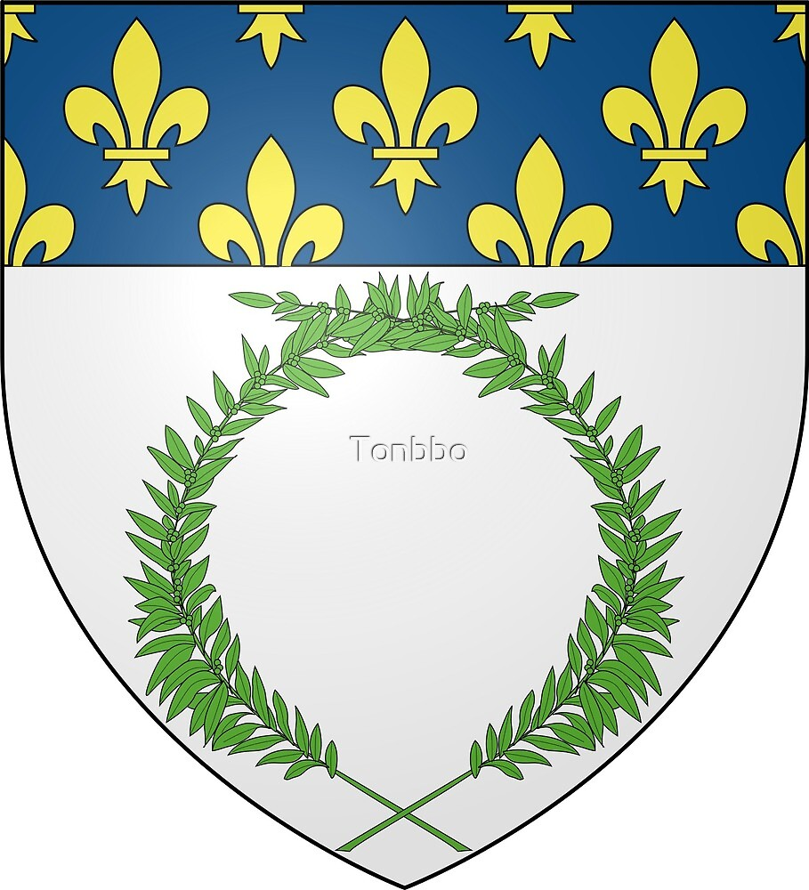 Reims coat of arms, France by Tonbbo