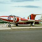 The Most Colourful of Javelins by Colin Smedley