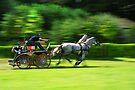 Full speed by Lenka