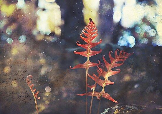 Botanica by Cloudlingpics