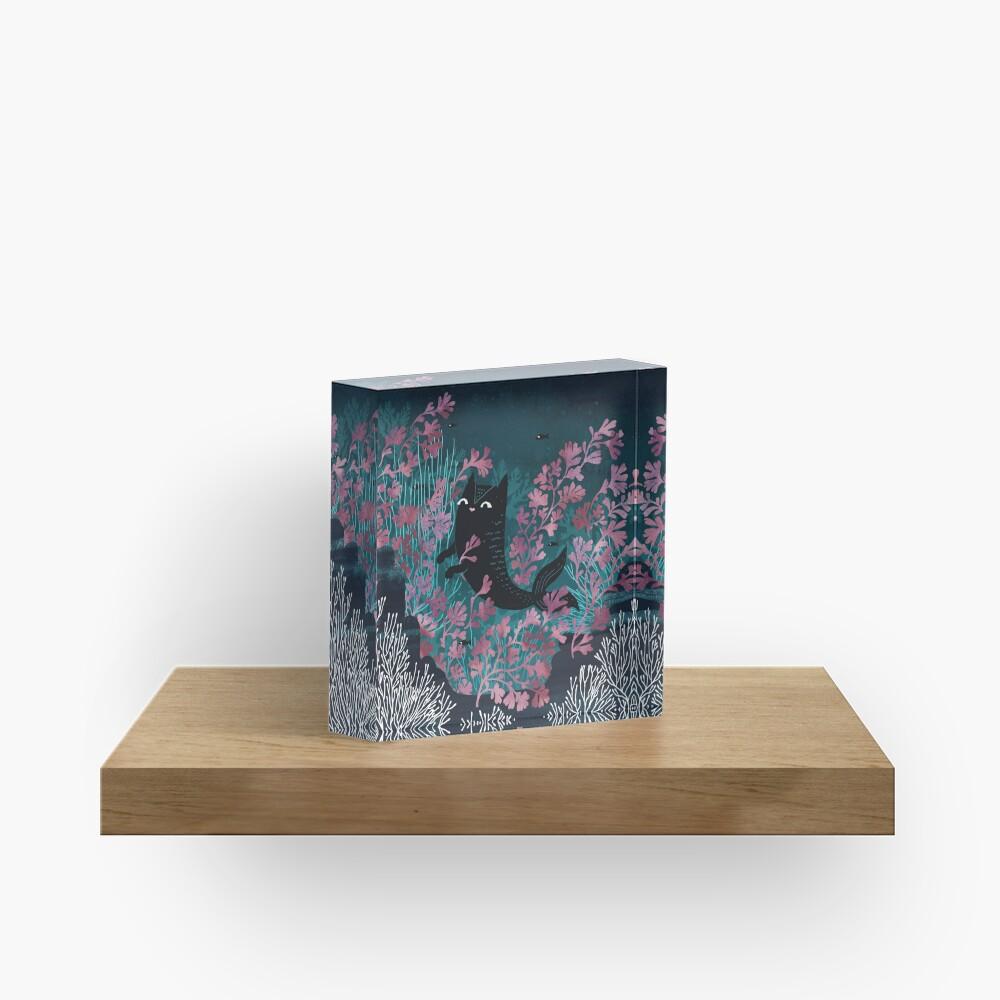 Undersea Acrylic Block