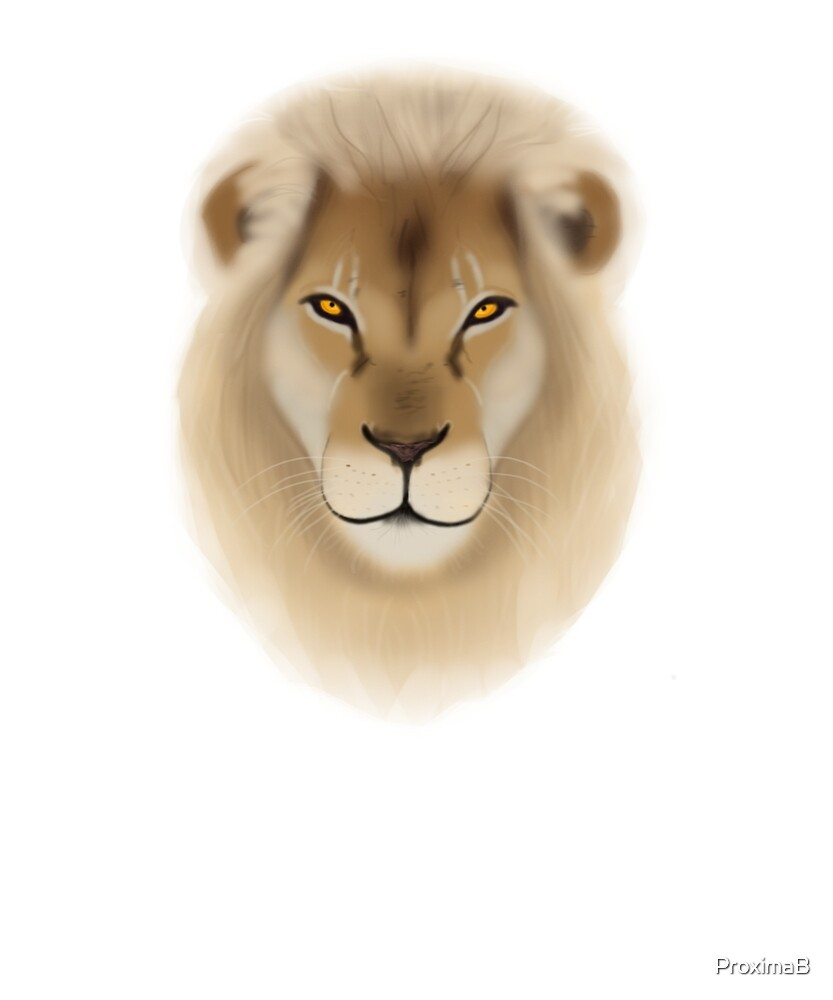 Lion Head King Of Savannah by ProximaB