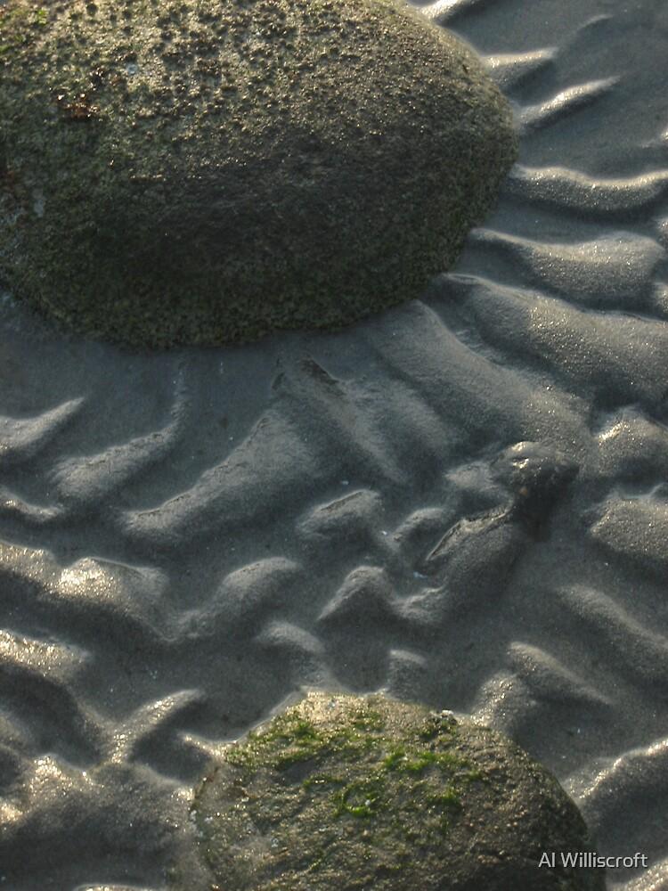 Sand flower by Al Williscroft