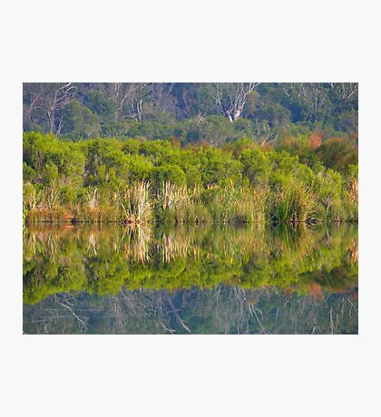 Upon Reflection 2 Photographic Print