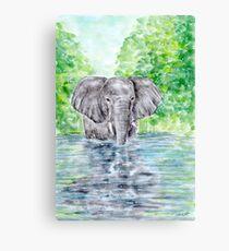 Elephant Reflection - Watercolour Painting Canvas Print