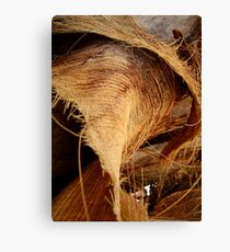 palmtree leaves Canvas Print