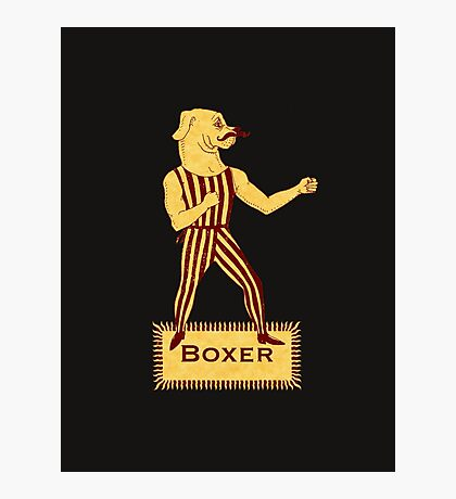 Boxer Dog Bonzo Bones Photographic Print