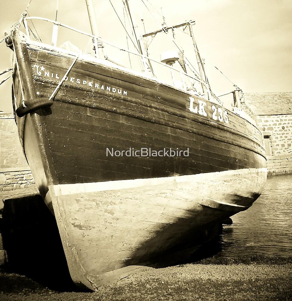 Da Boat by NordicBlackbird