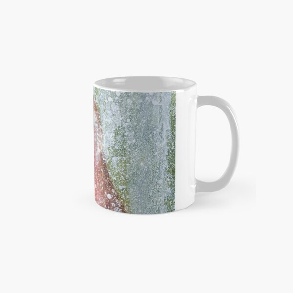 Hi My Name Is Robin Classic Mug