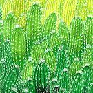 Green cactus explosion von Papierzucker