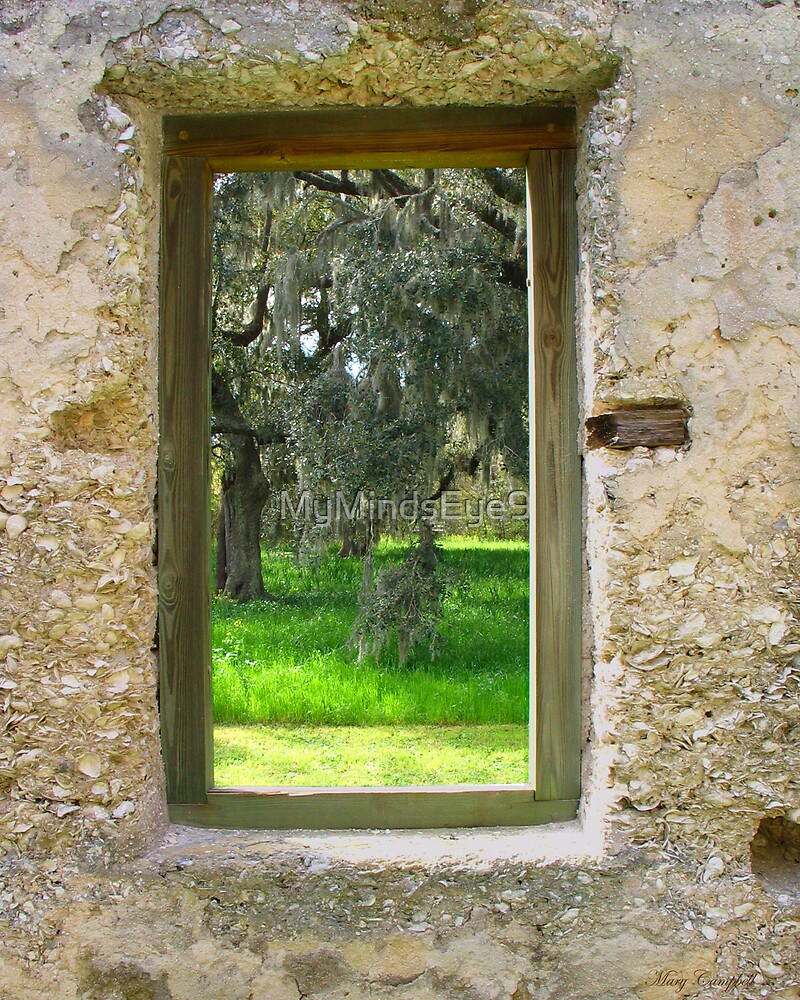 The World Beyond the Window by Mary Campbell