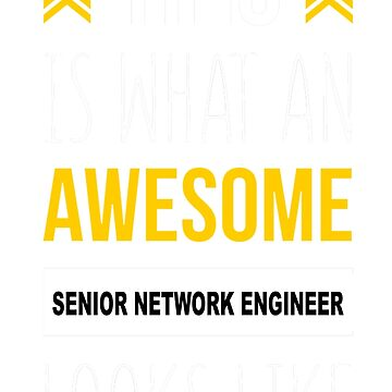 SENIOR NETWORK ENGINEER AWESOME LOOK LIKE by thomasride