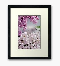 Close-up of lilac flowers on a table. Framed Print