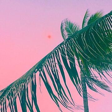 Pink Summer Sky by maryhorohoe