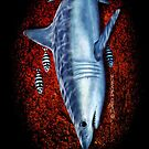 Searching - Mako Shark by David Pearce