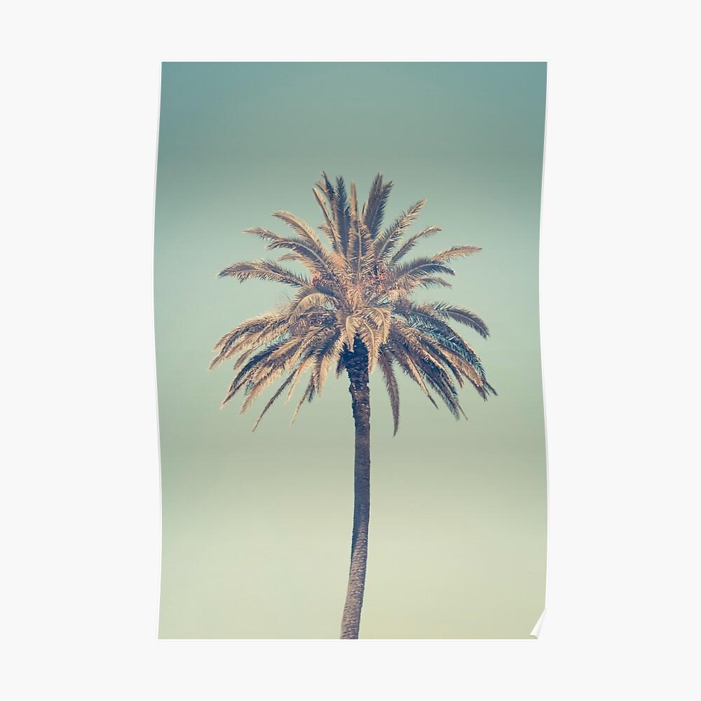 Retro palm tree Poster