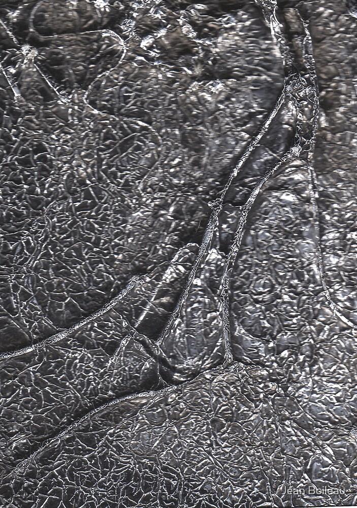 Essence of Tree Fossil by Jean Boileau