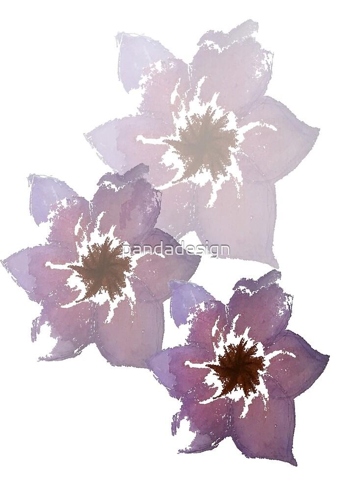 Flowers by pandadesign