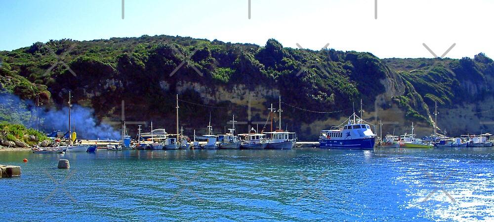 Corfu Coast II by Tom Gomez