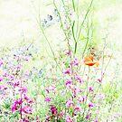 Fairy flowers by Stephanie Köhl