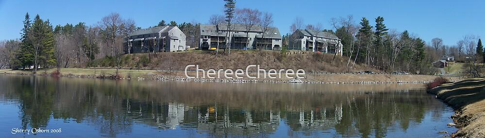 Condos on Pontoosuc Lake by ChereeCheree