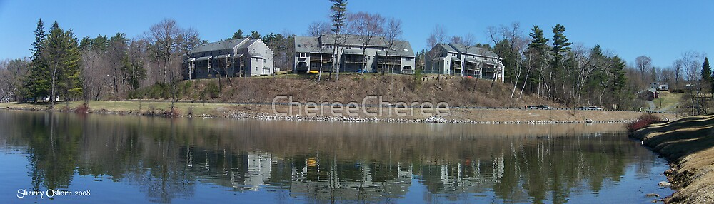 Condos on Pontoosuc Lake by ChereeCheree