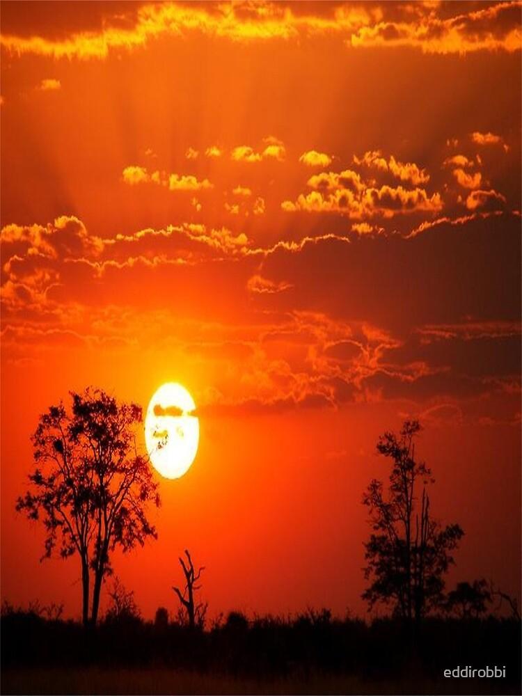 sunset, africa,  white, neon, fractal, psychedelic, art, wild, black by eddirobbi