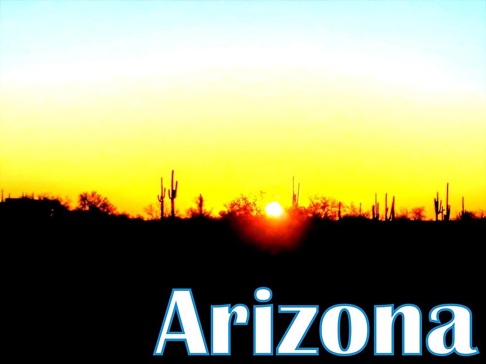 Arizona Desert by theveiledattic