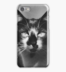 Black And White Cat Close Up iPhone Case/Skin