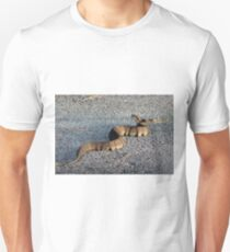 Cottonmouth Full Body T-Shirt