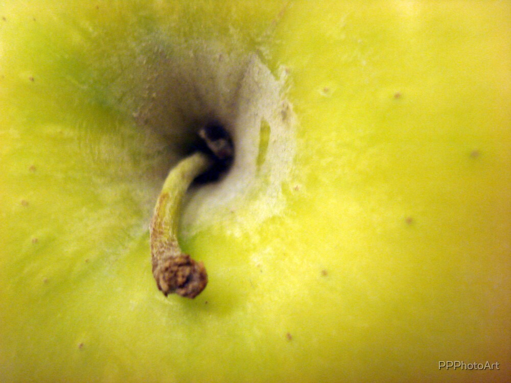 apple by PPPhotoArt